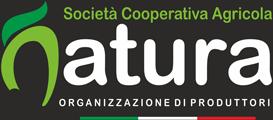 OpNatura - Kiwi, Clementine, Pesche e Arance Made in Italy